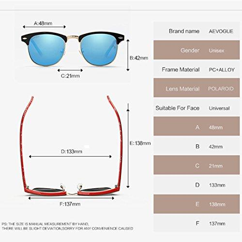 Polarized Semi-Rimless Sunglasses Designer Classic AE0369 By AEVOGUE