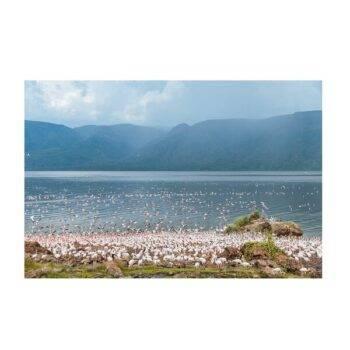 Lake Bogoria By Peter Irungu